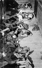 corpses of dead Jewish prisoners in boxcar at Dachau death camp