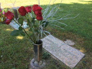 My roses at Nicky's grave
